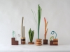 Anzalone_Potted Plants_600x