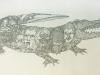 Maxfield_Bala_Alligator_900w