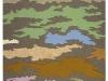 2009_map_ii_web