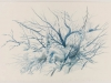 Tyler Bewley, Untitled #12