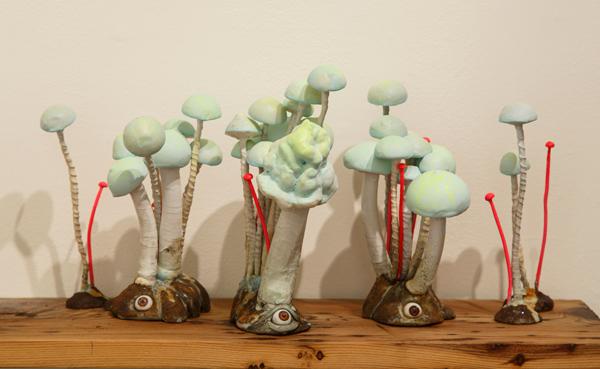 mushrooms_web